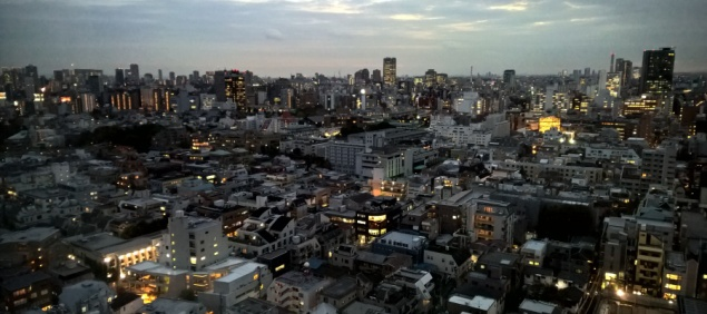 View from my window, Tokyo, 12 November 2015